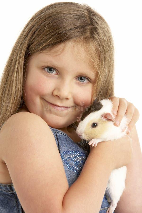 女孩几内亚藏品宠物猪年轻人 免版税库存图片