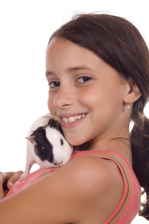 女孩几内亚藏品猪年轻人 库存照片