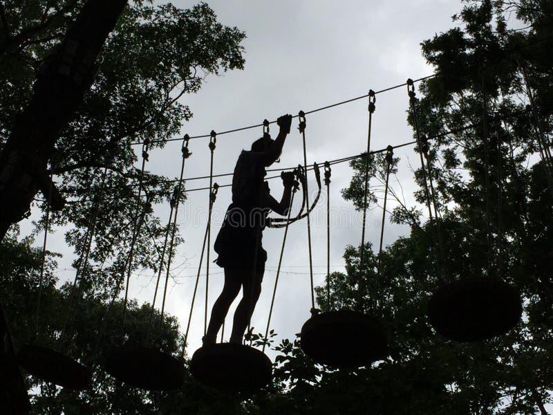 女孩剪影树梢障碍桩的 免版税库存图片