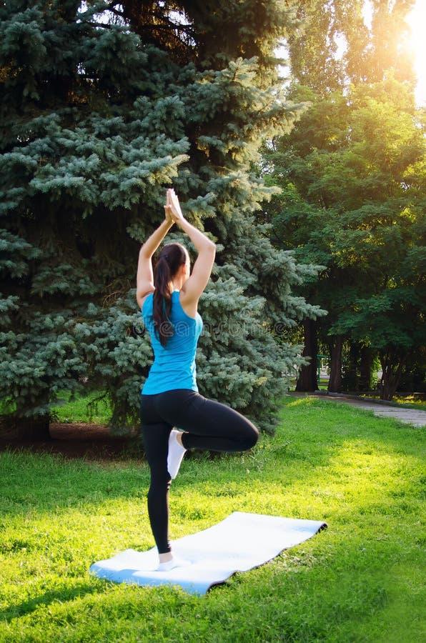 女孩参与瑜伽在公园,做锻炼 概念体育健康生活方式 免版税库存照片