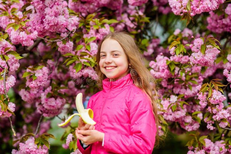女孩吃香蕉 在佐仓树背景桃红色花的孩子  享用樱花佐仓的孩子 愉快的春天 免版税库存照片