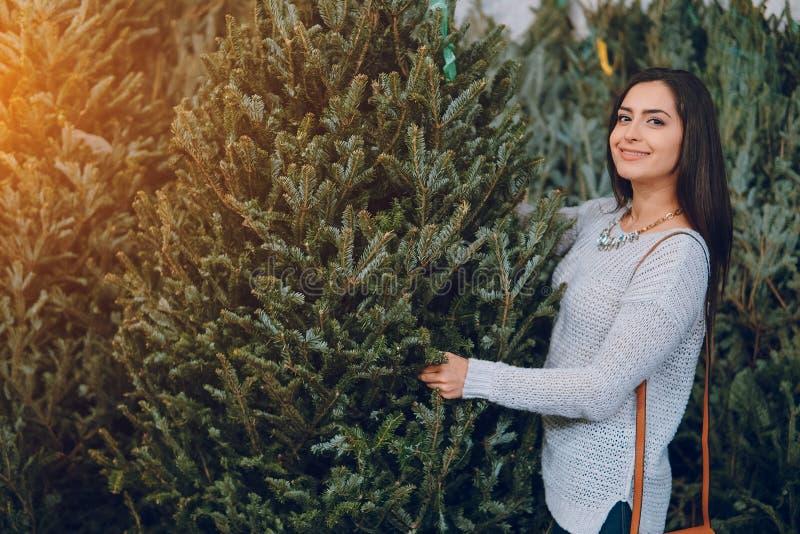 女孩和圣诞树 免版税图库摄影