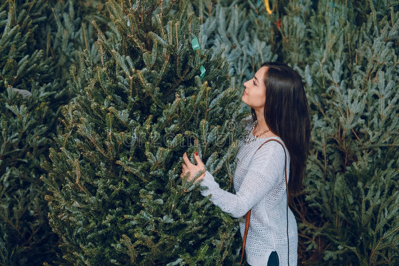 女孩和圣诞树 库存图片