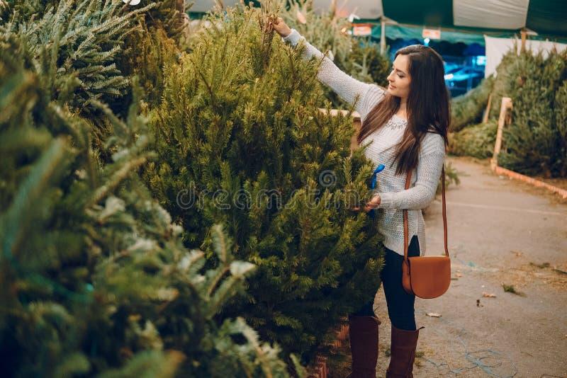 女孩和圣诞树 免版税库存照片
