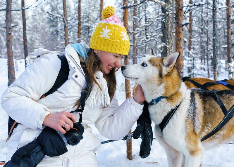 女孩和多壳的狗在拉普兰芬兰 免版税图库摄影