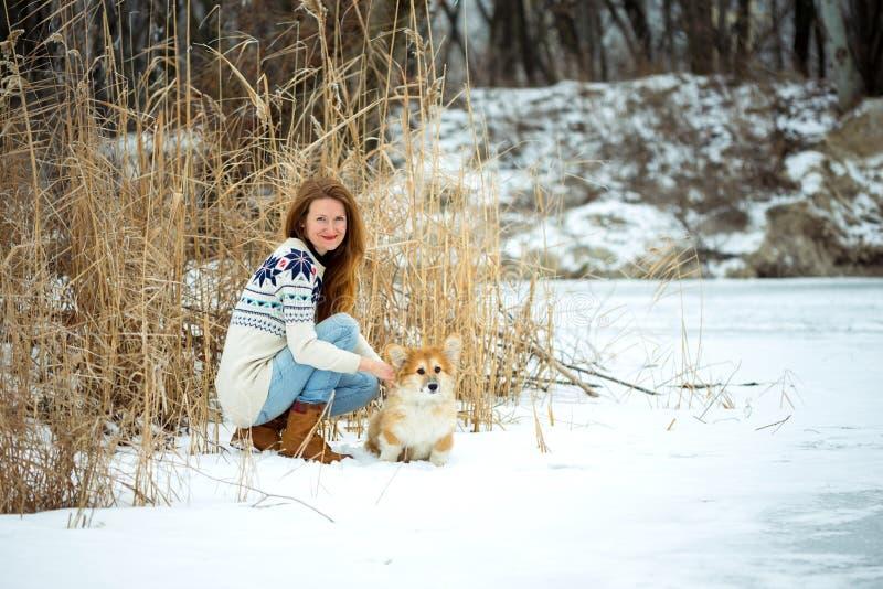 女孩和小狗蓬松小狗画象 库存照片