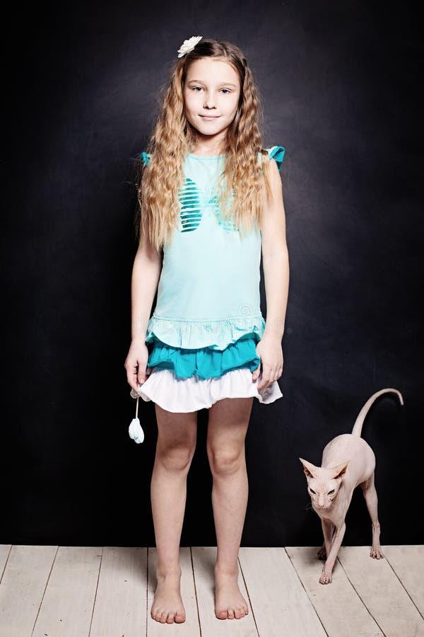 女孩和小猫 有猫的孩子 朋友 库存图片