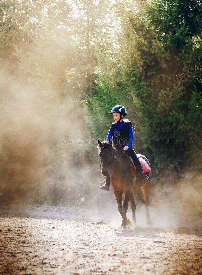 女孩和小马在尘土 免版税图库摄影