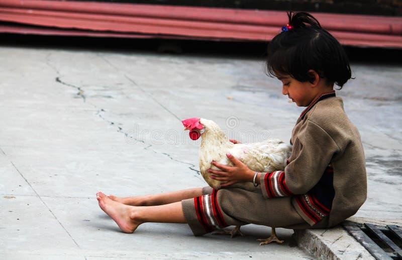 女孩和母鸡 免版税库存照片