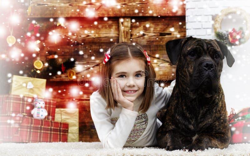 女孩和狗在新年 免版税库存图片
