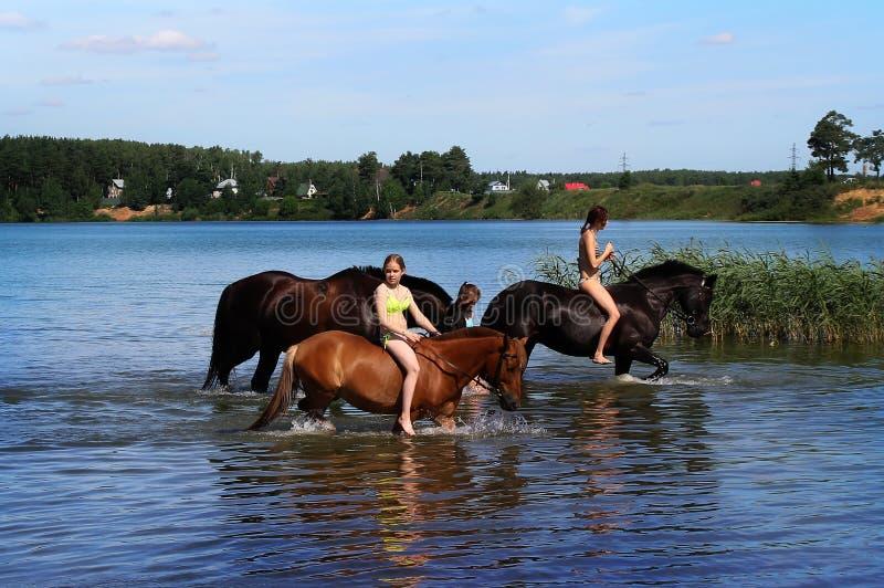 女孩和马在湖 免版税库存照片