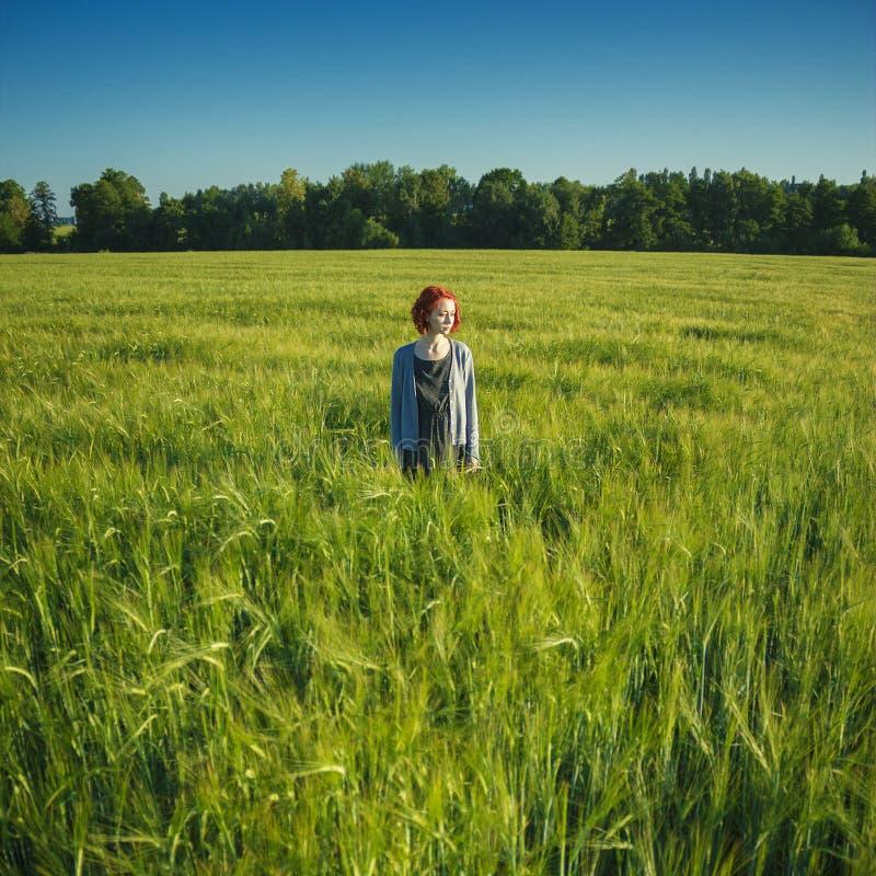 女孩和绿色领域早晨 免版税库存图片