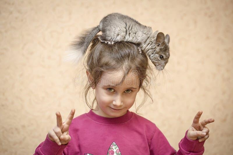 女孩和黄鼠 图库摄影