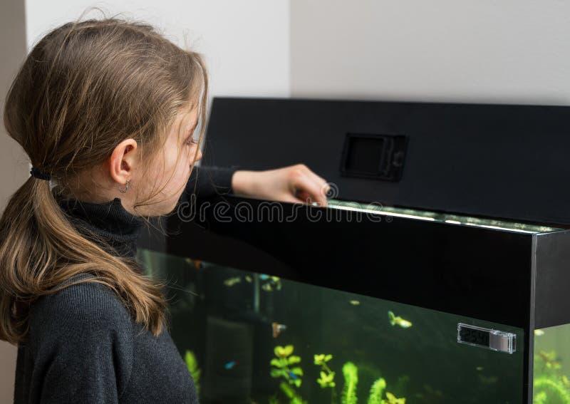 女孩哺养的鱼 免版税库存图片