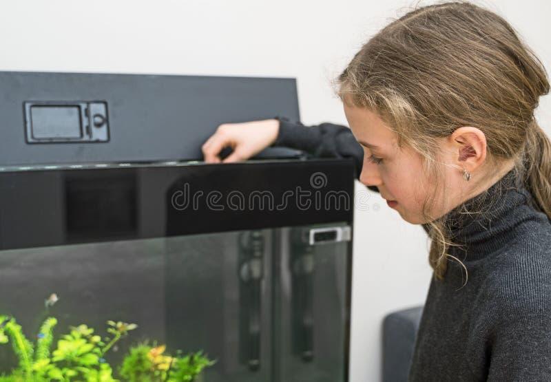 女孩哺养的鱼 库存图片