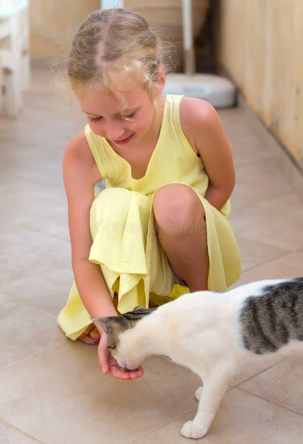 女孩哺养的猫 免版税库存照片