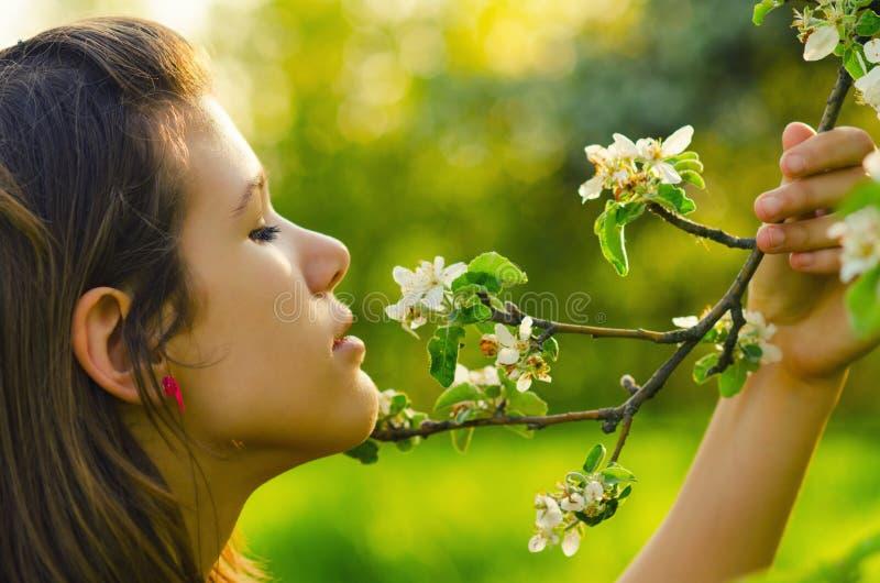 女孩嗅到的花在果树园 图库摄影