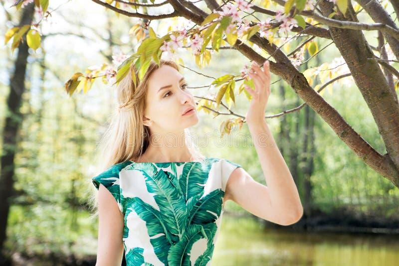 女孩在公园嗅到佐仓 春天,春天 库存照片