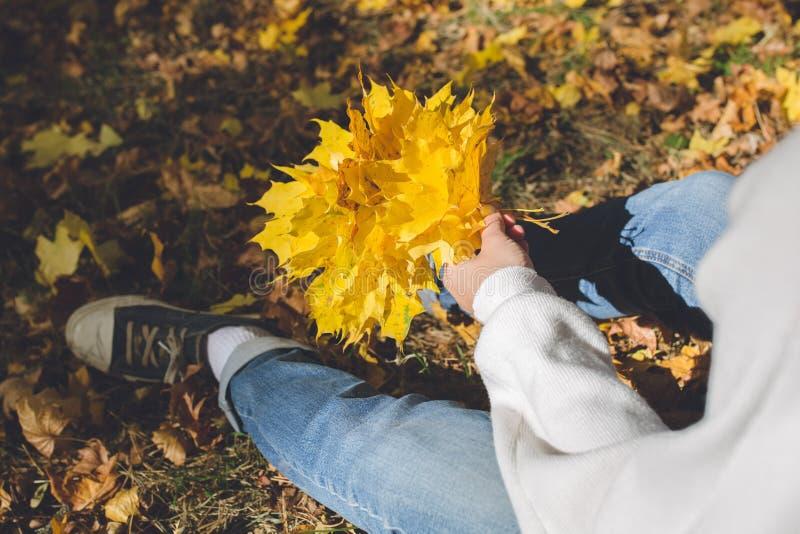女孩在公园编织黄色枫叶花圈,坐一个草甸 库存图片
