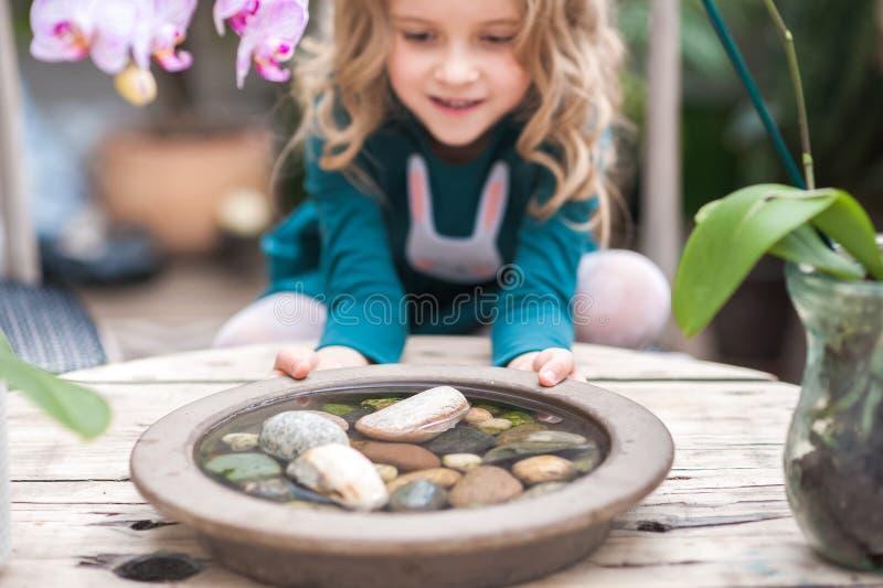 女孩在兰花温室演奏与花和石头 有开花的兰花的女孩拿着石头 免版税库存图片