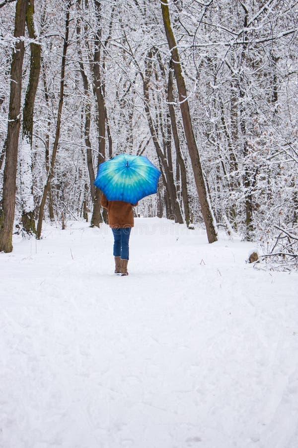 女孩在多雪的森林降雪概念的蓝色伞下 在湿雪雨下的妇女在冬天公园 库存照片