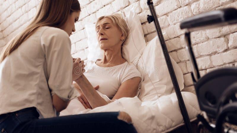 女孩在家护理年长妇女 他们握手 轮椅站立近 库存图片