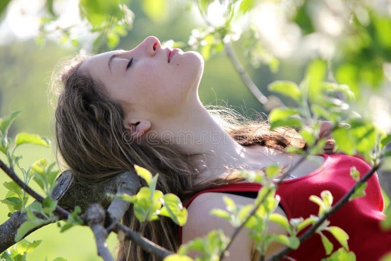 女孩在果树园 免版税库存照片