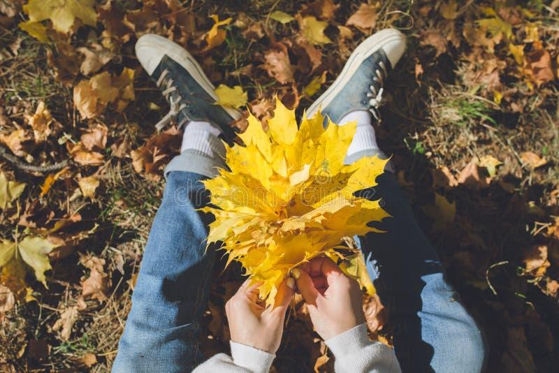 女孩在森林里编织黄色枫叶花圈,坐一个草甸在一好日子 免版税库存照片