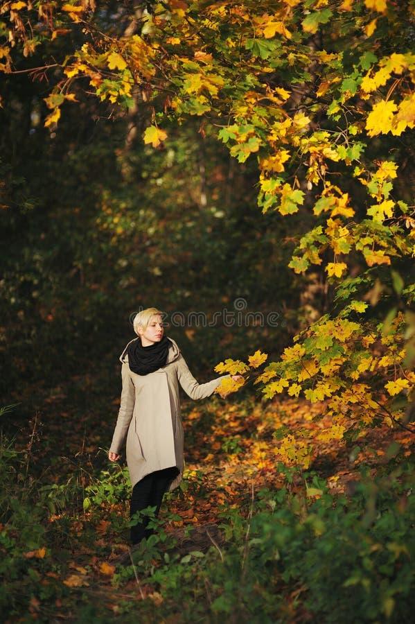 女孩在秋天公园走并且接触有叶子树的手 免版税库存照片
