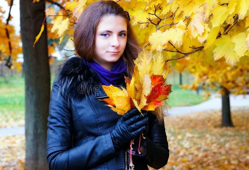 女孩在秋天公园走,收集叶子 免版税库存照片