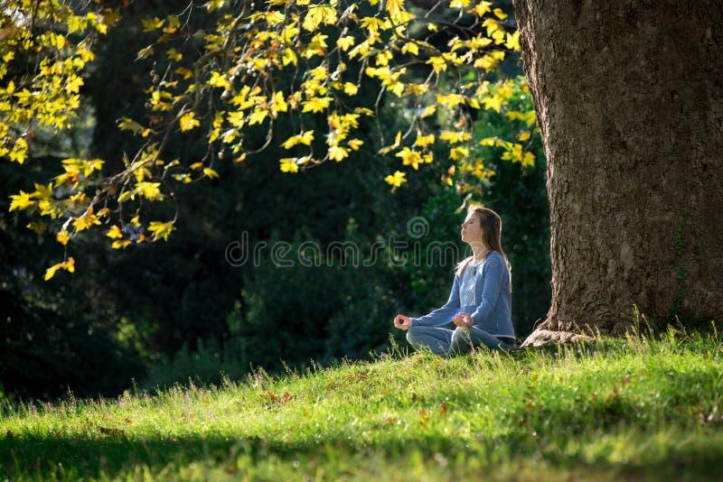 女孩在秋天思考坐草在一棵槭树下 免版税库存照片
