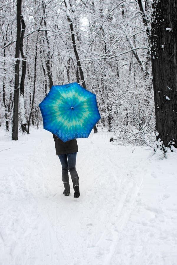 女孩在蓝色伞下在未聚焦多雪的森林里 降雪概念 在湿雪雨下的妇女在冬天公园 库存图片