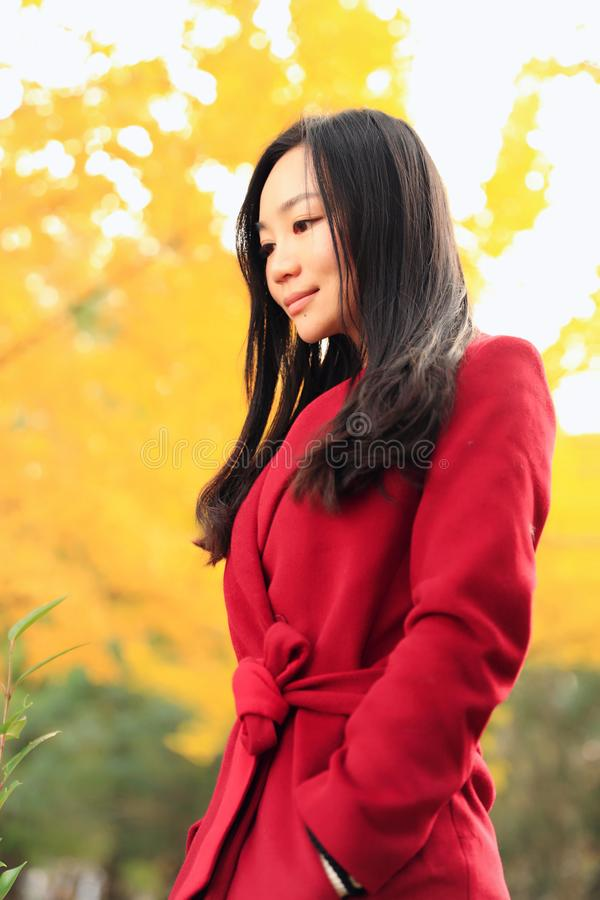 女孩在金黄秋天庭院里 库存图片