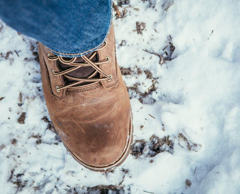 女孩在雪,冬天走,被删去 图库摄影