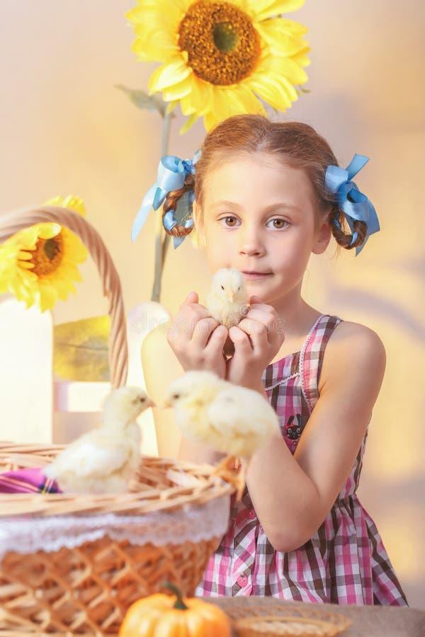 女孩在他的手上的拿着一只鸡在演播室 库存图片
