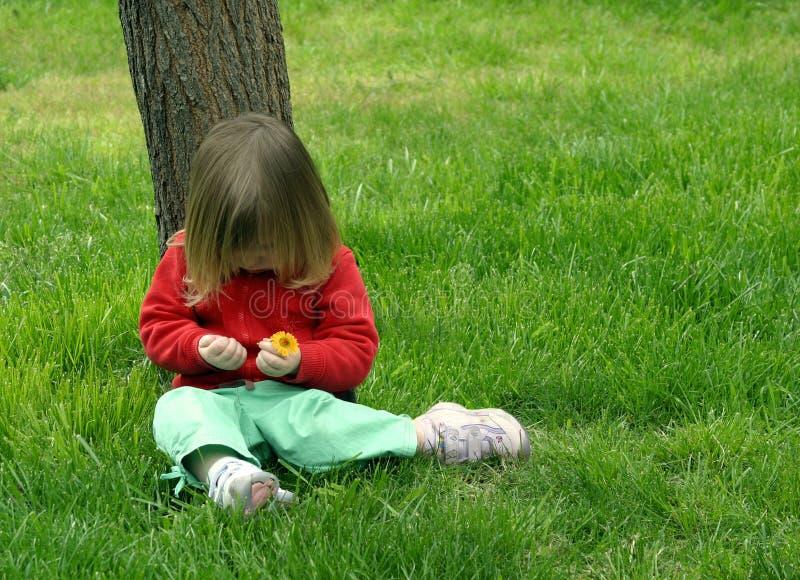 女孩坐的结构树下 免版税库存图片
