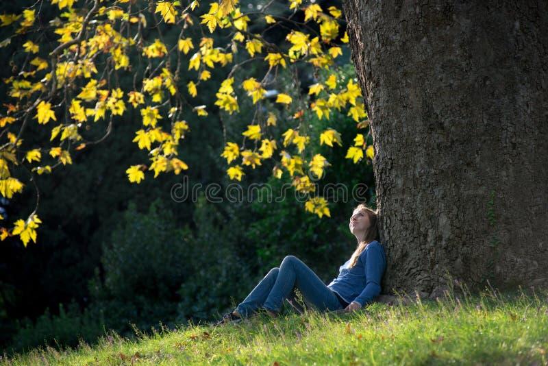 女孩坐草在一棵槭树下在秋天 库存照片