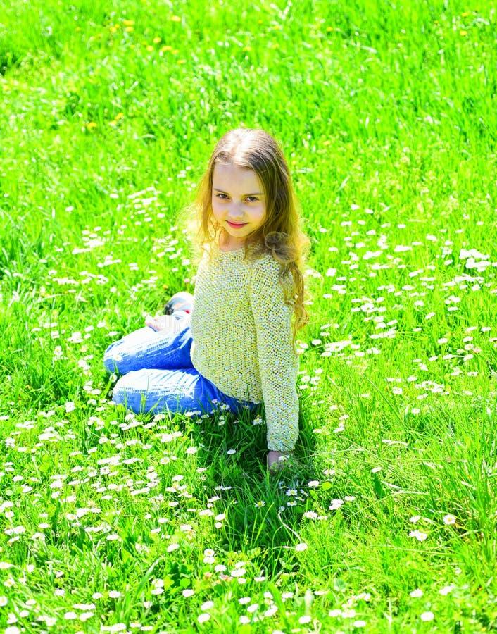 女孩坐草在grassplot,绿色背景 孩子享受春天晴朗的天气,当坐在草甸时 全盛时期 免版税库存照片