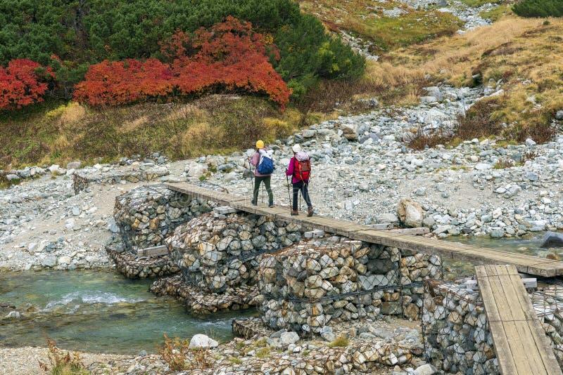 女孩夫妇通过过在山河的桥梁远足 免版税库存照片