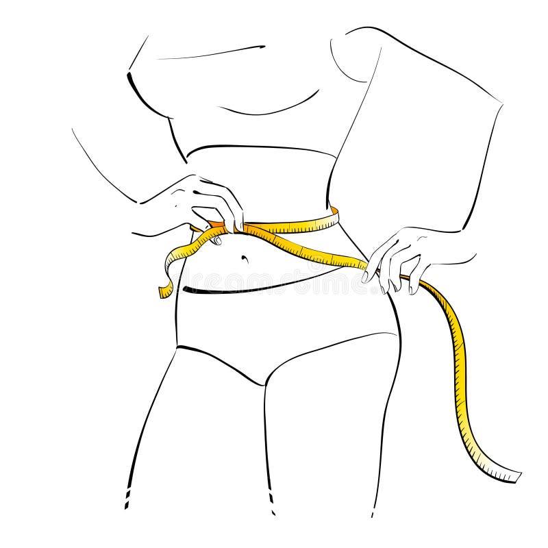 女孩她评定的腰部 向量例证