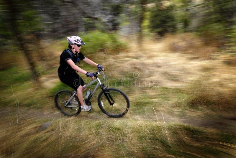 女孩妇女山骑自行车的行动速度 库存图片