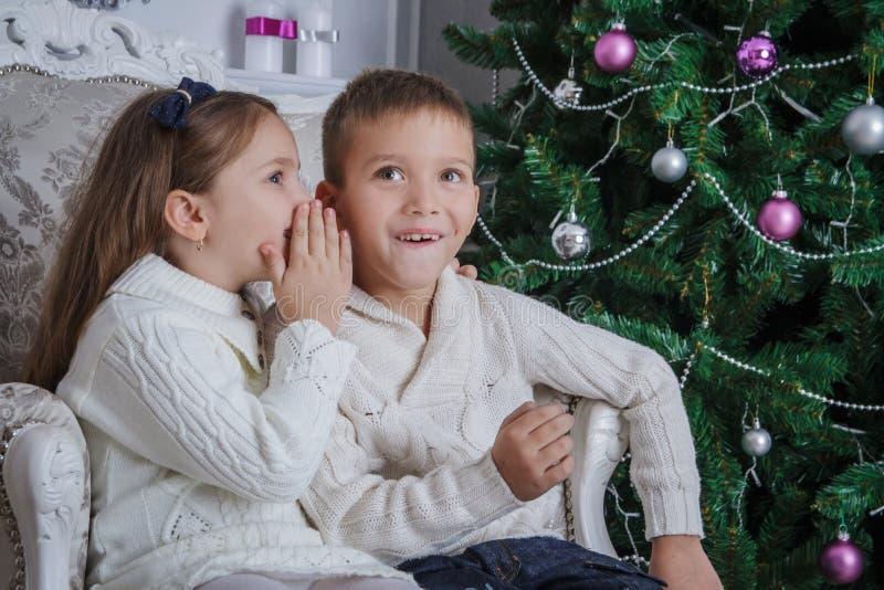 女孩对她的兄弟耳语请求什么圣诞老人 免版税库存图片