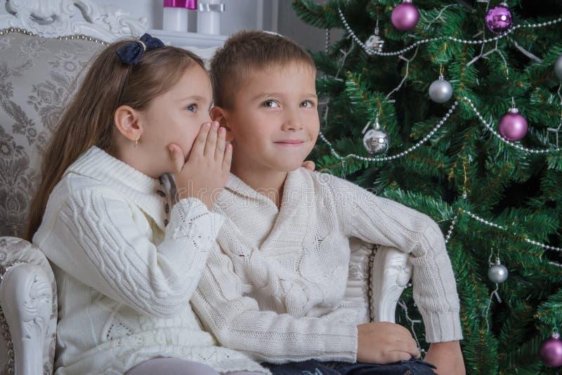 女孩对她的兄弟耳语请求什么圣诞老人 库存图片