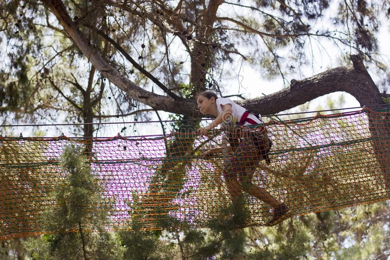 女孩少年用上升的设备在绳索游乐园 图库摄影