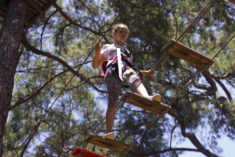 女孩少年用上升的设备在绳索游乐园 免版税库存照片