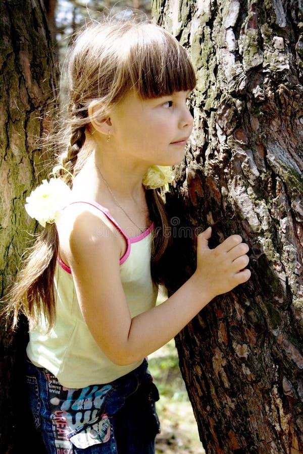 女孩少许木头 免版税库存照片