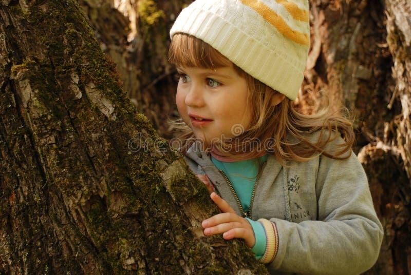 女孩少许老结构树 免版税库存照片