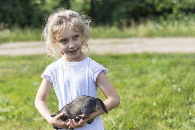 女孩拿着一只非常小小狗 ?? r 免版税库存图片
