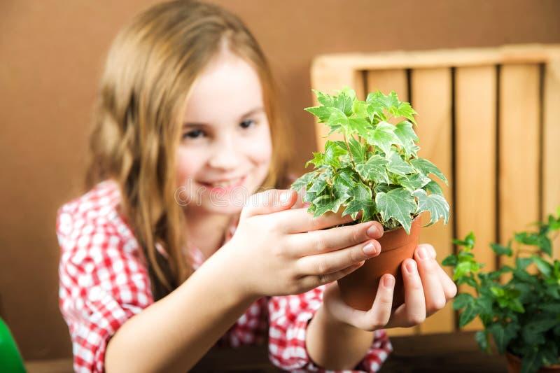 女孩拿着有花的一个罐 一格子衬衫的一个女孩在她的手上与石南花常春藤的地面 移植的盆的植物 库存图片