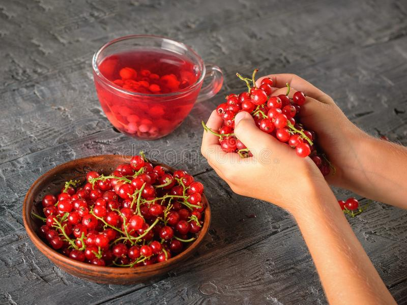 女孩拿着用两只手在一张黑暗的木桌上的很多红浆果 免版税库存照片